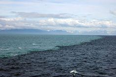 Esta fotografía muestra la línea donde se encuentran el Mar del Golfo de Alaska y las aguas originadas por el deshielo de los glaciares. La diferencia de salinidad y densidad impide que se mezclen. El agua de azul oscuro es del mar (salada) y la de azul claro la glaciar (dulce).  Via: usgs.gov