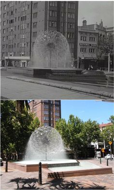 Al Alamein Fountain in Fitzroy Gardens, Kings Cross 1967 - [City of Sydney Archives / K. By Kevin Sundgren] As Time Goes By, Then And Now, Historical Photos, Once Upon A Time, Childhood Memories, Sydney, Fountain, Past, Sailing