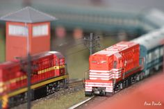 Locomotiva #Fepasa