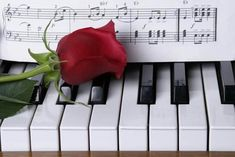Free art print of Piano with red rose. Red rose on piano keys with sheet music Free Art Prints, Canvas Art Prints, Piano Photography, Piano Art, Sheet Music Art, Oil Painting Pictures, Music Drawings, Best Love Songs, Piano Keys
