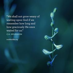 Uplifting Bible Quotes, Uplifting Thoughts, Spiritual Quotes, Inspirational Quotes, Spurgeon Quotes, Gods Timing, Faith Quotes, Godly Quotes, Move Mountains