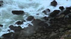 Couple plunges to death while taking photo at cliff edge Cliff Edge, Death, Couple, Videos, Couples