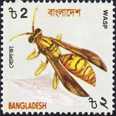 Wasp .Bangladesh Insects stamp circa 2000