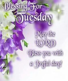 Blessing For Tuesday day good morning tuesday tuesday quotes tuesday blessings tuesday images good morning tuesday tuesday quote images