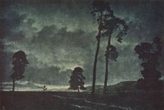 silhouetted landscape