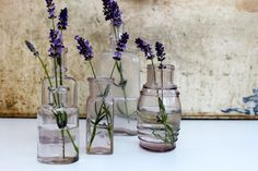 Set of 5 vintage medical bottles   / Free shipping by vintagewall, $32.00