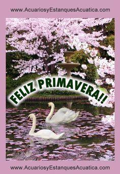 COMIENZA LA PRIMAVERA!!!! #acuarios #estanques #primavera http://acuariosyestanquesacuatica.com/