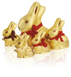 Lindt Master Chocalatier since 1845  Easter Gold Bunny   The Gold Bunny is available in a range of sizes and a choice of the finest milk, dark or white Lindt chocolate.