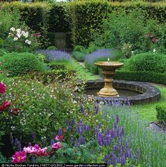 .Formal herb garden. 4 squares by camomile paths crossing at central fountain and pool. Beds edged box / lavender, filled herbs and Rosa Rosa Mundi . Beech hedge, turf seat - Clinton Lodge