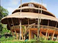 Join John Hardy on a tour of the Green School, his off-the-grid school in Bali that teaches kids how to build, garden, create (and get into college). The centerpiece of campus is the spiraling Heart of School, perhaps the world's largest freestanding bamboo building.
