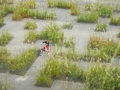 Flashcode garden by studio basta and wagon landscaping