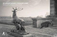 """""""Les animaux sauvages s'installent à Paris"""", par Publicis Conseil pour Parc Zoologique de Paris. 2014."""