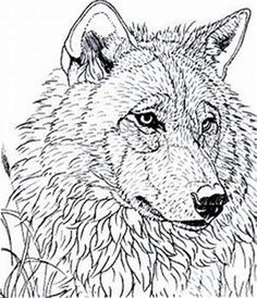Image result for Free Wood Burning Tracing Patterns #WoodPatternsWood Wood Burning Stencils, Wood Burning Pen, Wood Burning Patterns, Wood Patterns, Stencil Wood, Stenciling, Animal Coloring Pages, Coloring Book Pages, Pyrography Patterns