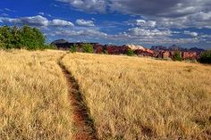 The Trans-Zion Trek. Oh I can't wait to do this one day!