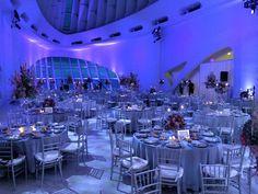Canopies - Milwaukee Event Rentals