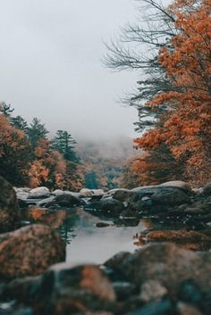 14 Fall Road Trip Ideas In The United States Ein New England Road Trip im Herbst This image has get. Autumn Photography, Tumblr Photography, Travel Photography, Iphone Photography, Autumn Aesthetic Photography, Adventure Aesthetic, Autumn Scenery, Autumn Nature, Autumn Forest