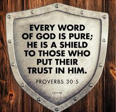 """""""Every word of God is pure: he is a shield unto them that put their trust in him"""" Proverbs 30:5 KJV"""