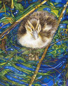 baby mallard duck CARD - Rhian Symes Baby Mallard Duck, Beautiful Birds, Swan, Stained Glass, Artist, Cards, Animals, Swans, Animales