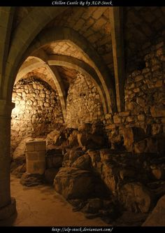 Chillon Castle - Dungeon 15 by ALP-Stock on DeviantArt Medieval World, Medieval Castle, Chateau Medieval, Castle Ruins, Catacombs, Ancient Architecture, Abandoned Places, Places To See, Beautiful Places