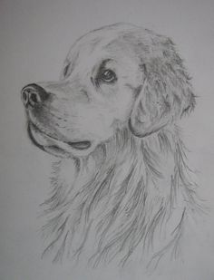 desene in creion cu animale simple - Căutare Google Madison Beer, Art Club, Easy Drawings, Cars And Motorcycles, Painting & Drawing, Anime Art, Dogs, Paintings, Sweet