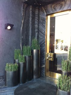 Very cool front entry done in marble and brass....but I like the round black pots done in horsetail!