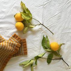 Winter in babaà 💛 #babaaknitwear #allnatural