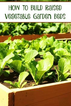 How to Build Raised Vegetable Garden Beds. This is the perfect way to get the most out of a little space.  Plus hardly any weeds at all with this method.