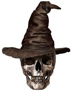 Skull by art-hm