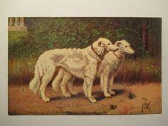 alte Ansichtskarte  Tier Hund, Dog , Windhund  um 1910