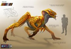 Salticere Creature Concept Sheet Irikari Creature Concept Sheet by franeres on DeviantArt