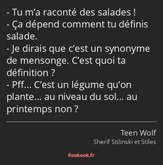 Citations Teen Wolf, Citations Film, Stiles Teen Wolf, Teen Wolf Quotes, Teen Wolf Funny, Wolf Meme, Downey Jr, Wolf Design, Sterek