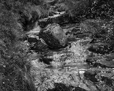 Silver Creek, Way Down, Trail, Retro, Photography, Photograph, Fotografie, Photoshoot, Retro Illustration