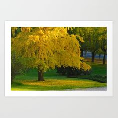 Yellow Autumn Art Print by msalazar Autumn Art, Art Prints, Yellow, Nature, Painting, Art Impressions, Naturaleza, Painting Art, Paintings