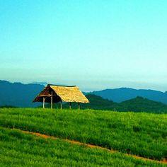 #nature #indonesia