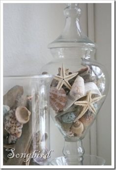 at the Nest Shells and sea stars looking pretty in glass vases and apothecary jars.Shells and sea stars looking pretty in glass vases and apothecary jars. Beach Theme Bathroom, Nautical Bathrooms, Beach Room, Beach Bathrooms, Beach Theme Office, Costal Bathroom, Mermaid Bathroom, Mermaid Room, Beach Cottage Style