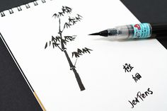 Asia's long history of chinese calligraphy and drawing make it a great source for quality brush pens.  These brush pens from Pentel feature nylon brush tips and are filled with aqueous dye-based inks that are great  for painting or sketching on the go.