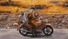foxy riders