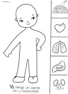 Risultati immagini per actividades para preescolar Human Body Activities, Preschool Activities, Science For Kids, Science And Nature, Body Preschool, My Themes, Activity Sheets, Body Systems, Preschool Worksheets