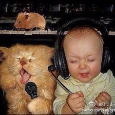 Cute baby and cat singing (while hamster plays piano).