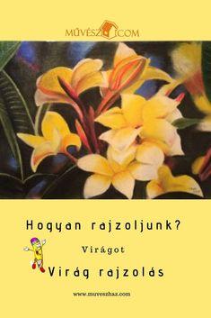 Virág rajzolás lépésről - lépésre Plants, Art, Art Background, Kunst, Plant, Performing Arts, Planets, Art Education Resources, Artworks