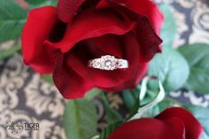 Hey, I found this really awesome Etsy listing at https://www.etsy.com/listing/190785558/beautiful-1-carat-6mm-engagement-scroll