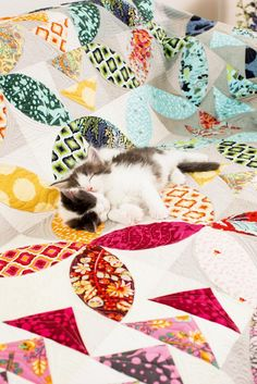 = free pattern =  Bird Seed quilt (shown with kitty) by Tula Pink for Bernina