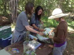 Amy May (hat) with farm interns Andrea & Paige bagging the freshly picked salad mix from this morning.