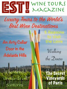 Latest news and pages on the Vinodiversity