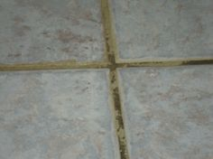 Grout Color Sealing - Important Information!