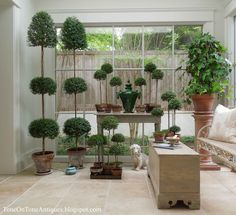 Tone on Tone: Southern Living Photo Shoot ||  topiaries