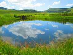 Farms For Sale in Dullstroom. View our selection of apartments, flats, farms, luxury properties and houses for sale in Dullstroom by our knowledgeable Estate Agents. Property Search, Farms, Mountains, Nature, Travel, Haciendas, Viajes, Naturaleza, Destinations