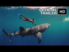 ▶ Journey to the South Pacific - IMAX Theatrical Trailer (2013) [HD] - YouTube
