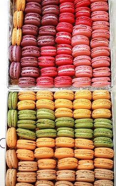 Not sure if its worth all the trouble to make Macaroons.  Everyone not making them thinks so...