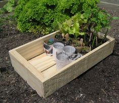 wooden seed tray made in new zealand from sustainable sourced untreated pine